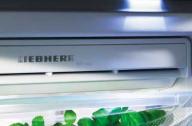 Ремонт однокамерных холодильников Liebherr