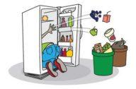 Как можно сэкономить при правильном пользовании холодильником?